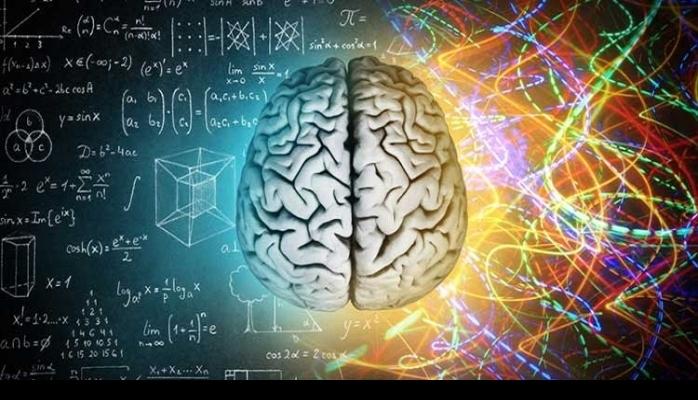 Beyin 90 yaşına kadar çalışıyor!