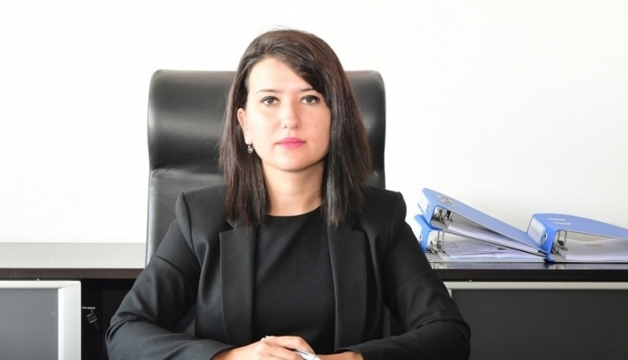 CHP'li Gökçen'den aktrol eleştirisi