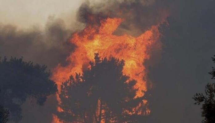 Manavgat'ı kül eden yangın